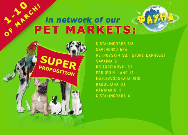 super propositions in  Fauna Pet Shops